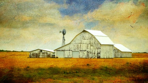 Old White Barn Jigsaw Puzzle