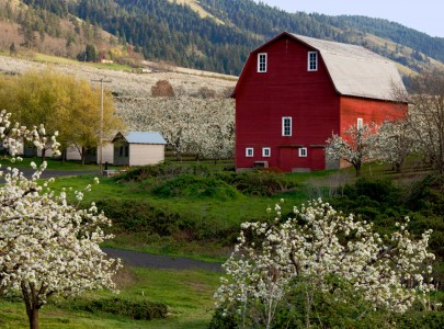 Oregon Farm Jigsaw Puzzle