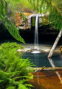 Otway Waterfall Jigsaw Puzzle