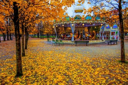 Paris Carousel Jigsaw Puzzle