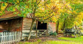 Park Barn