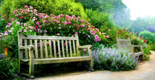 Park Benches Jigsaw Puzzle