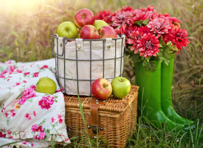 Picnic Apples Jigsaw Puzzle