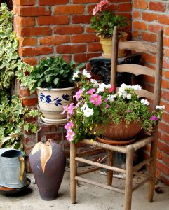 Plant Stands Jigsaw Puzzle