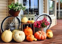 Porch Bike