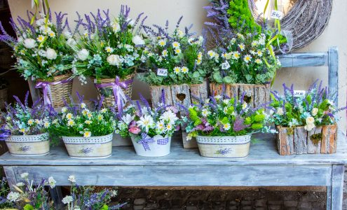 Potted Arrangements Jigsaw Puzzle