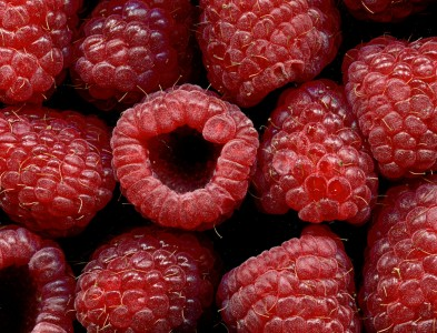 Raspberries Jigsaw Puzzle