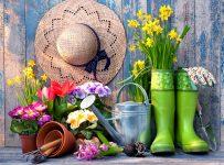 Ready to Garden