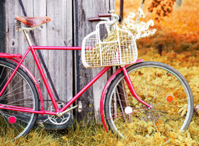 Red Bike Jigsaw Puzzle