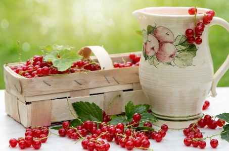 Red Currants Jigsaw Puzzle