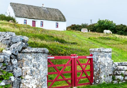 Red Gate and Cottage Jigsaw Puzzle