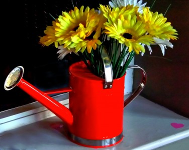 Red Watering Can Jigsaw Puzzle