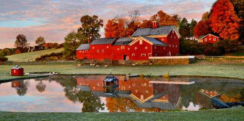 Reflected Barn Jigsaw Puzzle