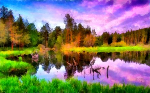 Reflected Color Jigsaw Puzzle
