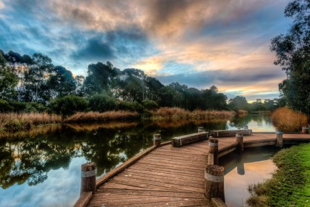 River Torrens Jigsaw Puzzle