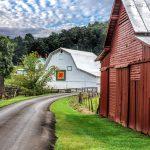 Road and Barns