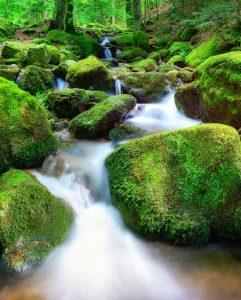 Rocky Creek Jigsaw Puzzle