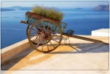 Rooftop Cart