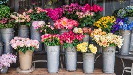 Rose Buckets