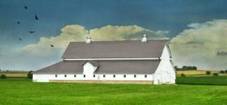 Rosenfeld Barn