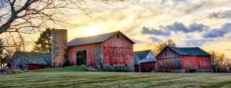 Rural Henrietta