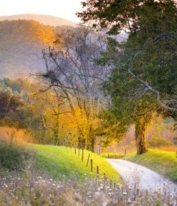 Rural Road Jigsaw Puzzle