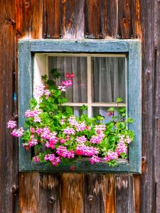 Rustic Window Jigsaw Puzzle