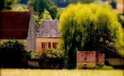 Saint-Cyr-la-Rosiere