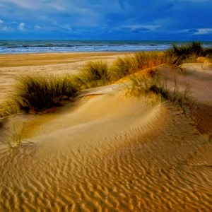 Sand Dune Jigsaw Puzzle