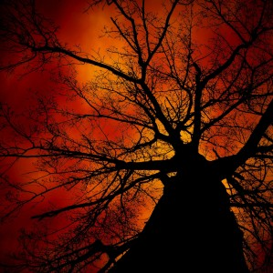 Scary Tree Jigsaw Puzzle