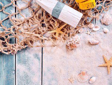 Sea Catch Jigsaw Puzzle
