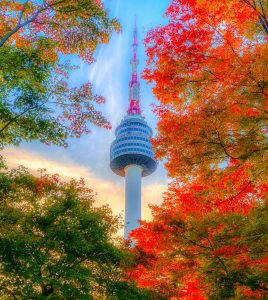 Seoul Tower Jigsaw Puzzle