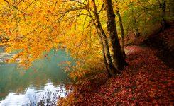 Seven Lakes Trail