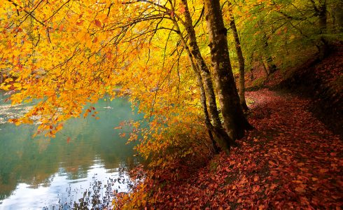 Seven Lakes Trail Jigsaw Puzzle