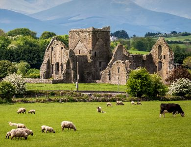 Sheep and Castle Jigsaw Puzzle
