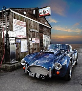 Shelby Jigsaw Puzzle
