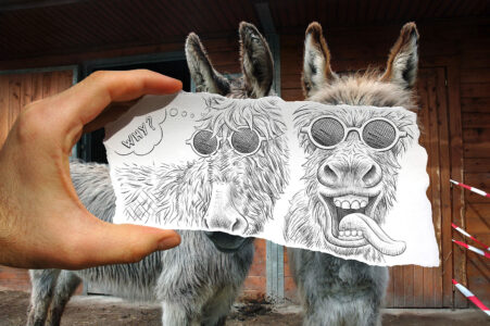 Silly Donkeys Jigsaw Puzzle
