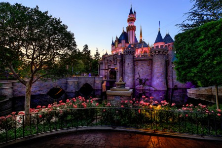 Sleeping Beauty Castle Jigsaw Puzzle