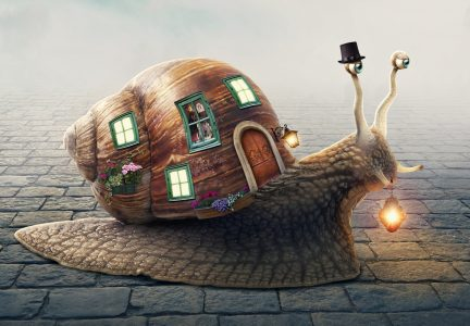 Snail Home Jigsaw Puzzle