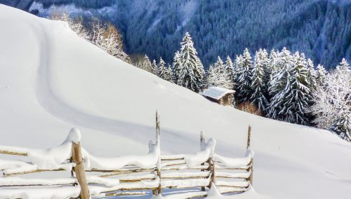 Snow Trail Jigsaw Puzzle