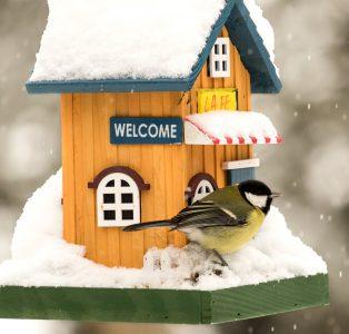 Snowy Birdhouse Jigsaw Puzzle