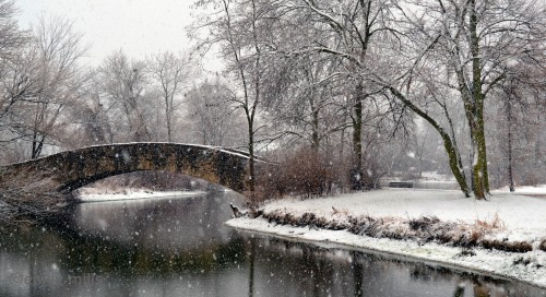 Snowy Bridge Jigsaw Puzzle