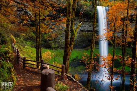 South Falls Jigsaw Puzzle