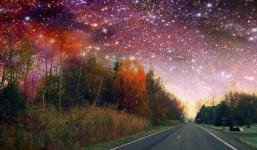 Star Filled Night
