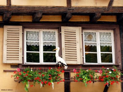 Stork in the Window Jigsaw Puzzle
