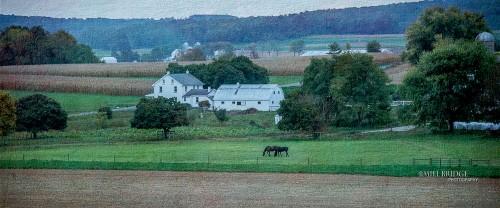 Strasburg Farm Jigsaw Puzzle