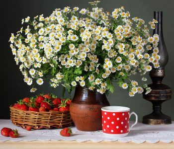Strawberries and Daisies Jigsaw Puzzle