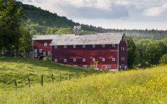 Summer Field Barn