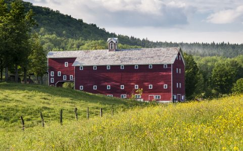 Summer Field Barn Jigsaw Puzzle