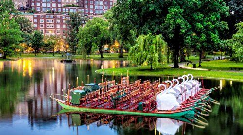 Swan Boats Jigsaw Puzzle